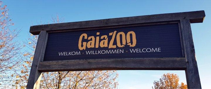 Adventure: GaiaZOO Date!